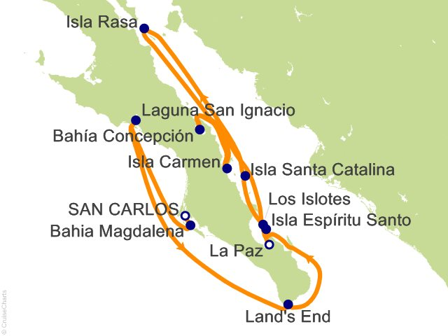 14 Night Baja California   A Remarkable Journey Cruise from San Carlos